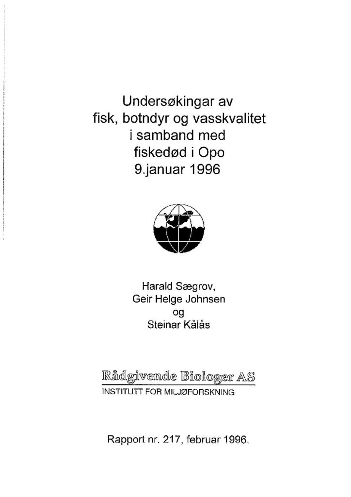 Rapport cover - rapport 217