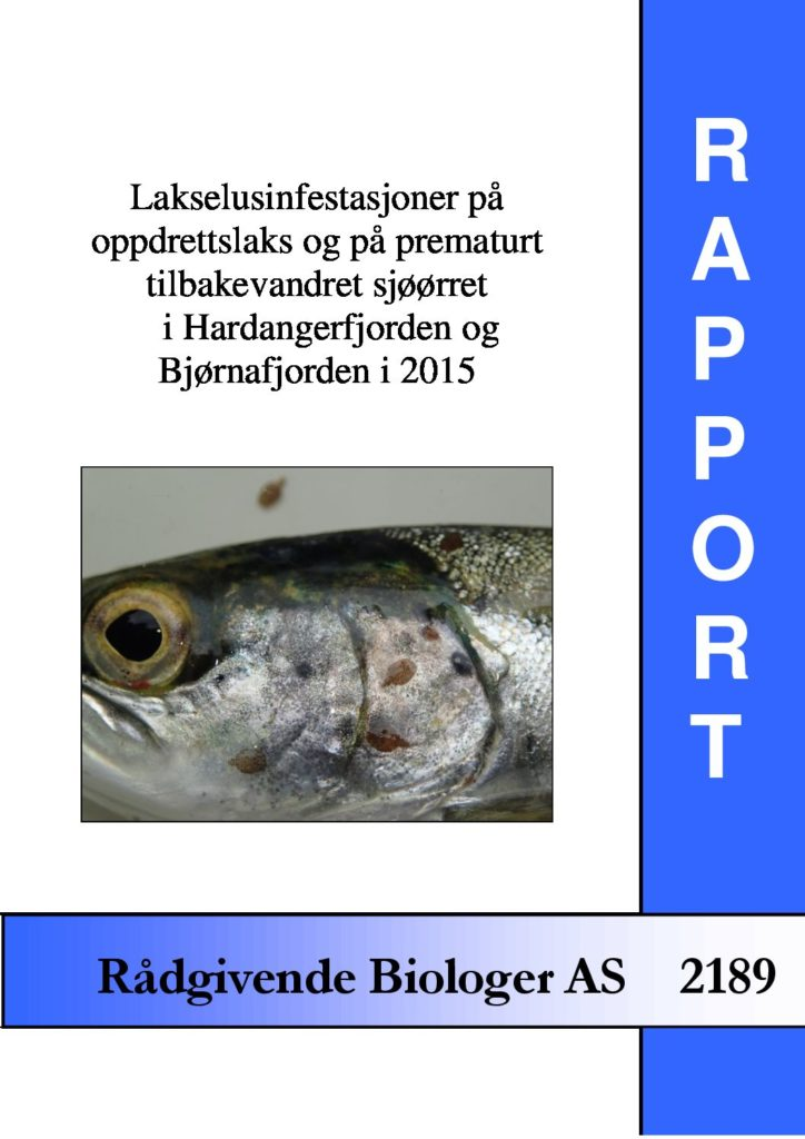 Rapport cover - rapport 2189