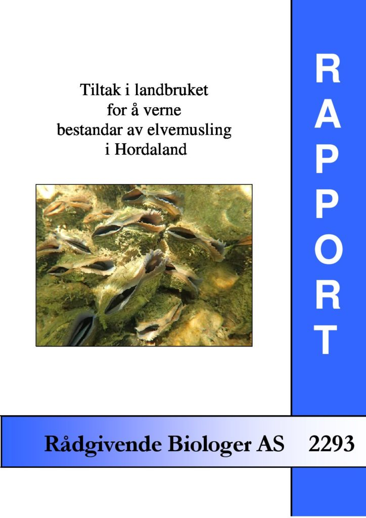 Rapport cover - rapport 2293