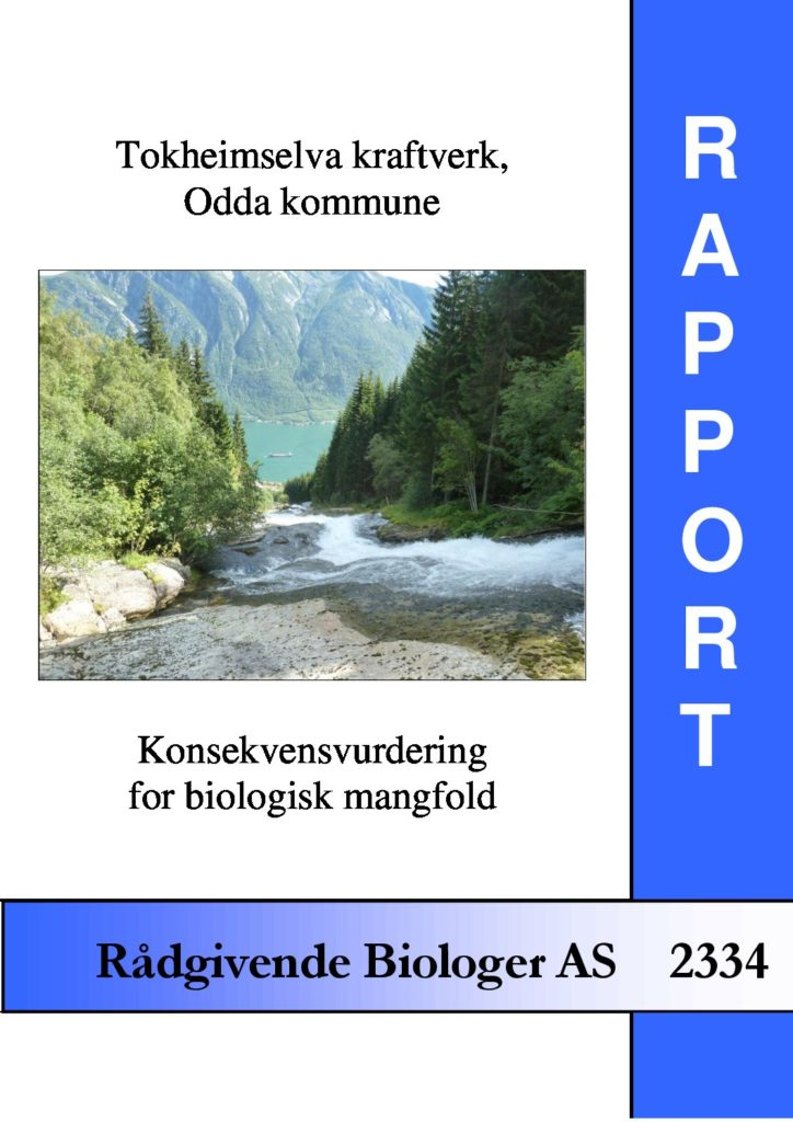 Rapport cover - rapport 2334