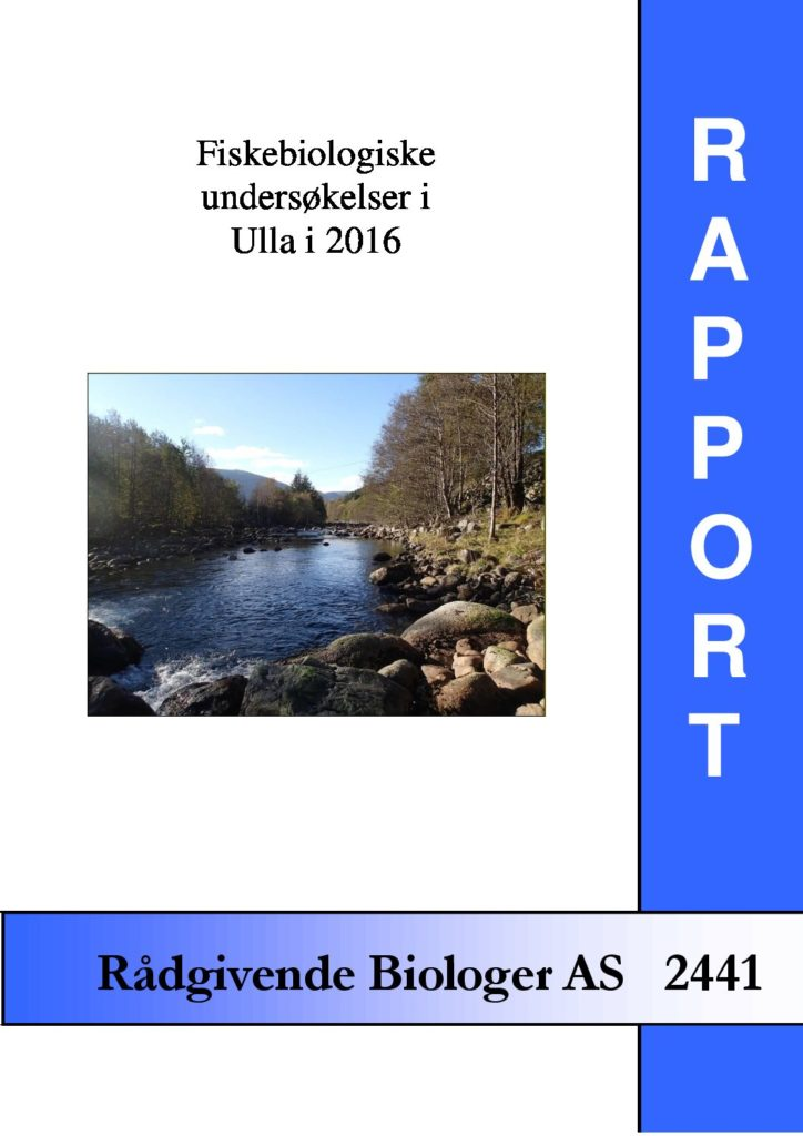 Rapport cover - rapport 2441
