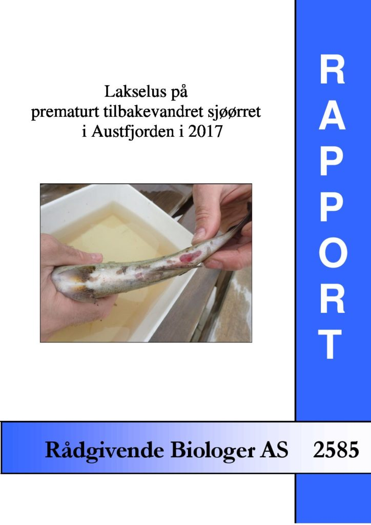 Rapport cover - rapport 2585