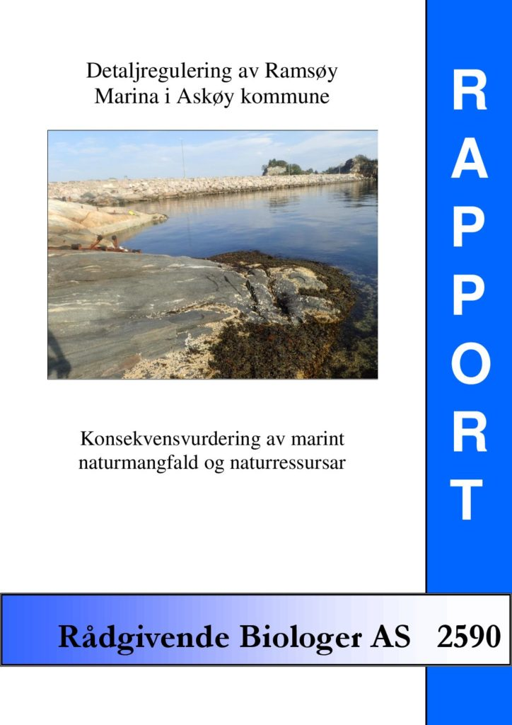 Rapport cover - rapport 2590
