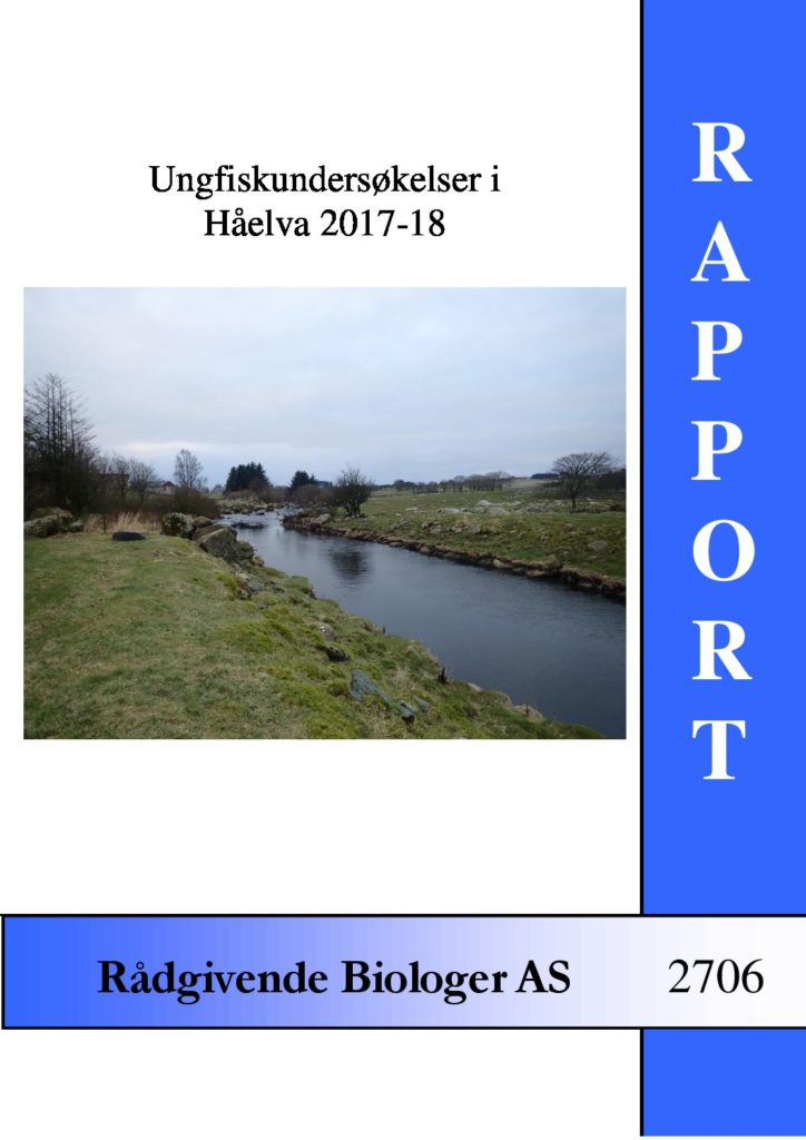 Rapport cover - rapport 2706