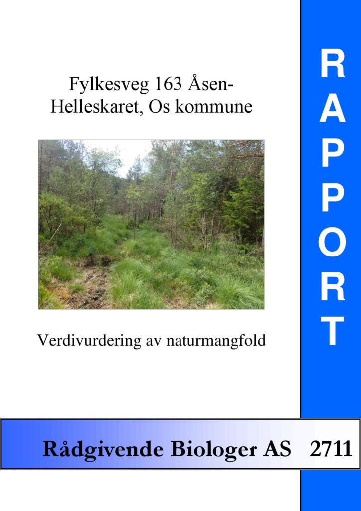 Rapport cover - rapport 2711