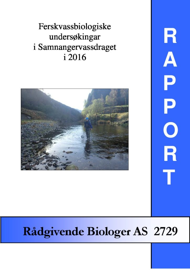 Rapport cover - rapport 2729
