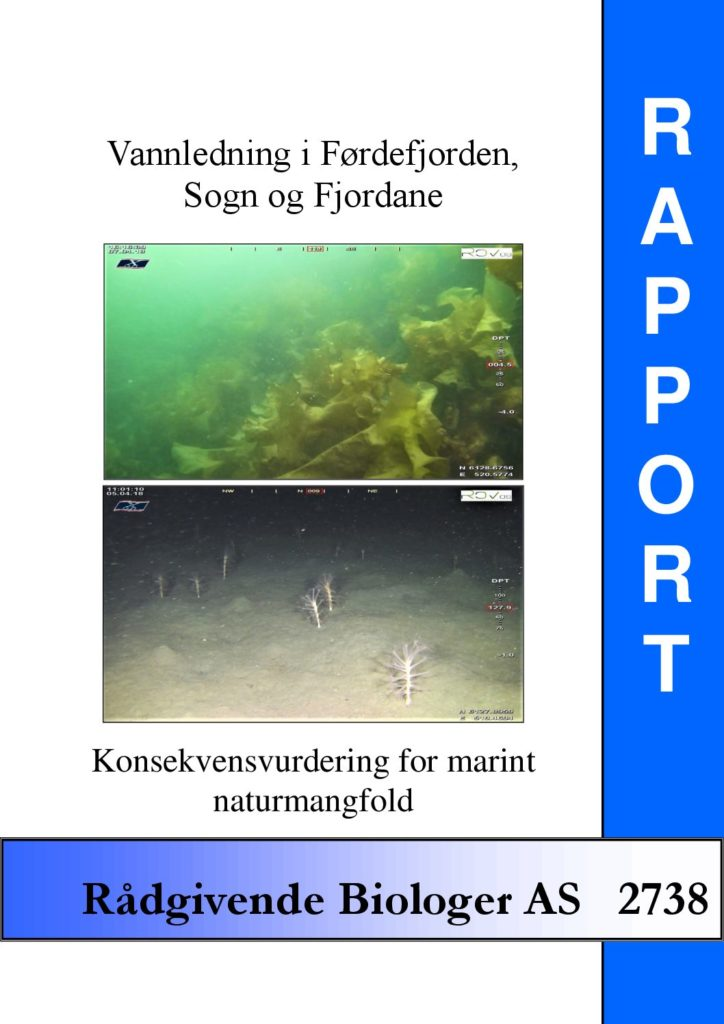Rapport cover - rapport 2738