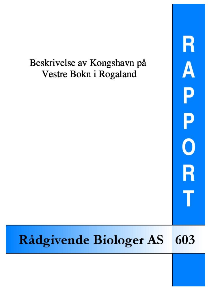 Rapport cover - rapport 603