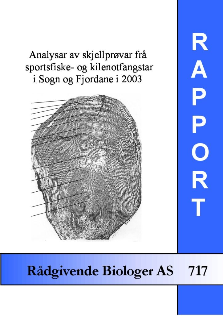 Rapport cover - rapport 717