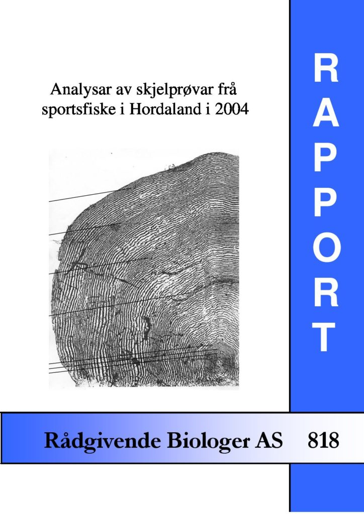 Rapport cover - rapport 818
