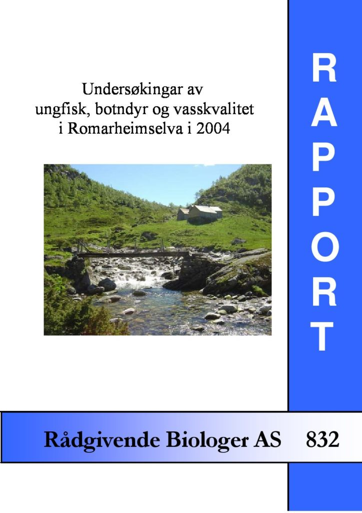 Rapport cover - rapport 832