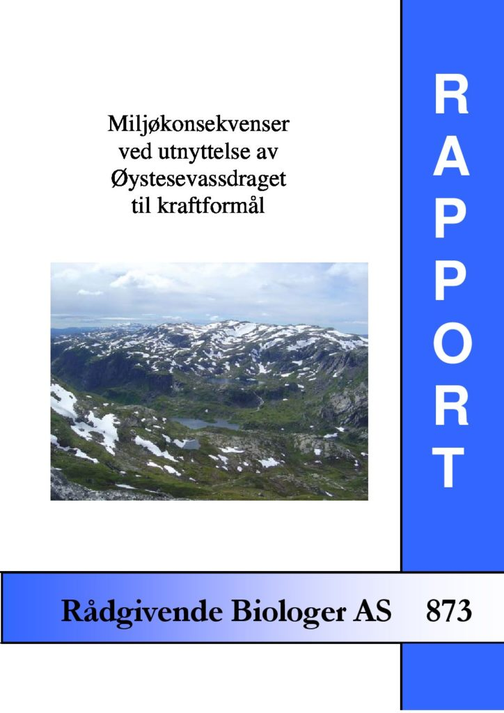 Rapport cover - rapport 873
