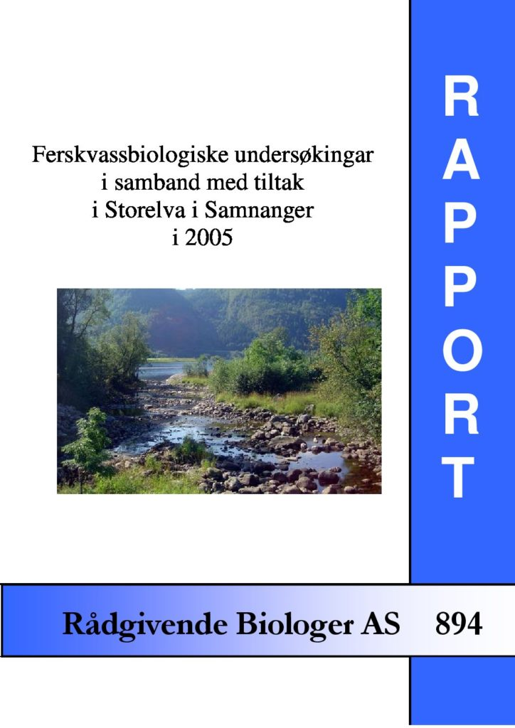 Rapport cover - rapport 894