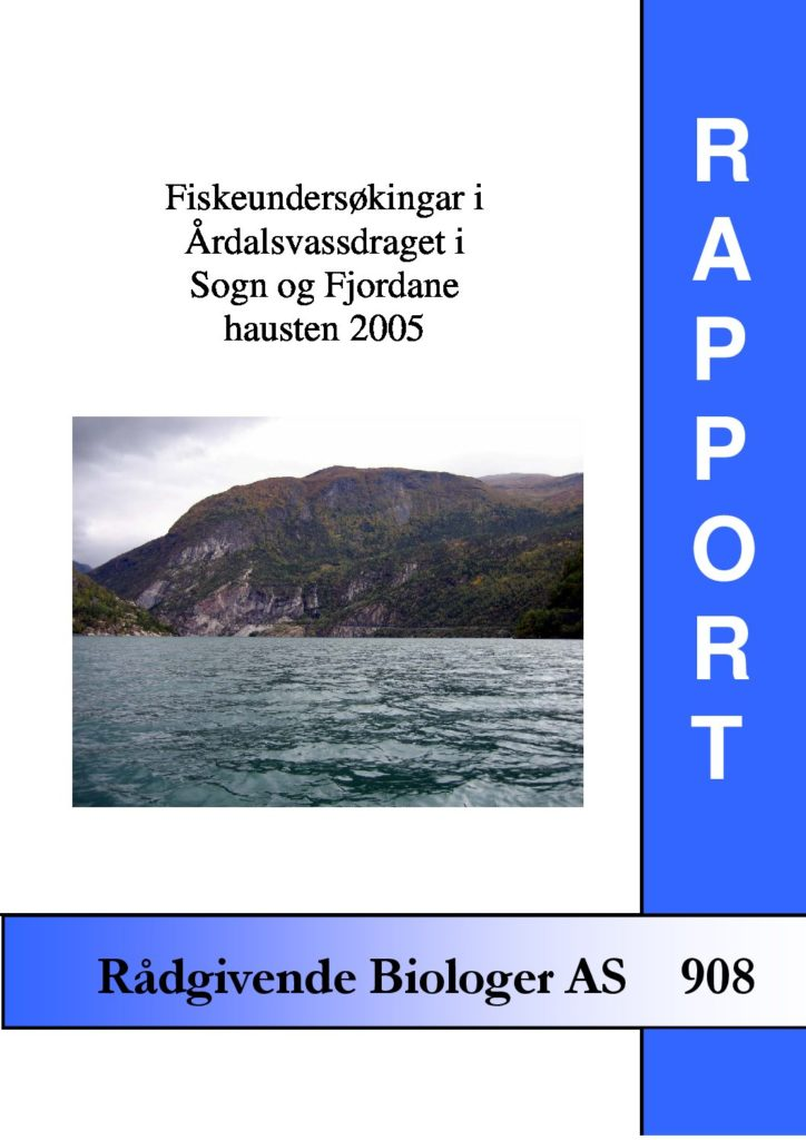 Rapport cover - rapport 908
