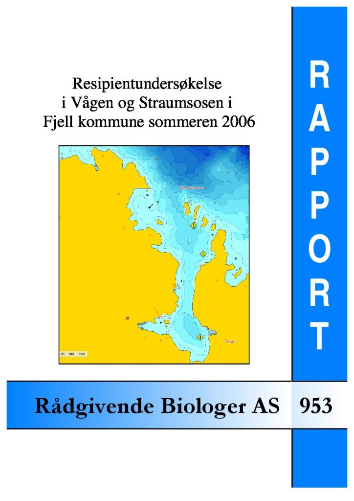 Rapport cover - rapport 953