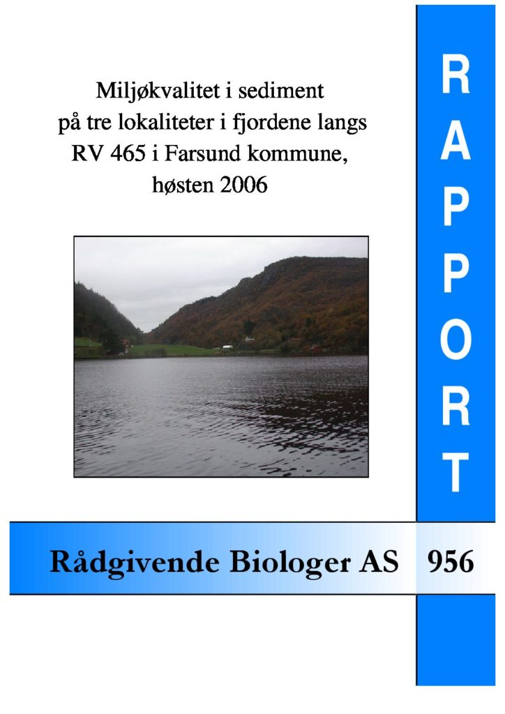 Rapport cover - rapport 956