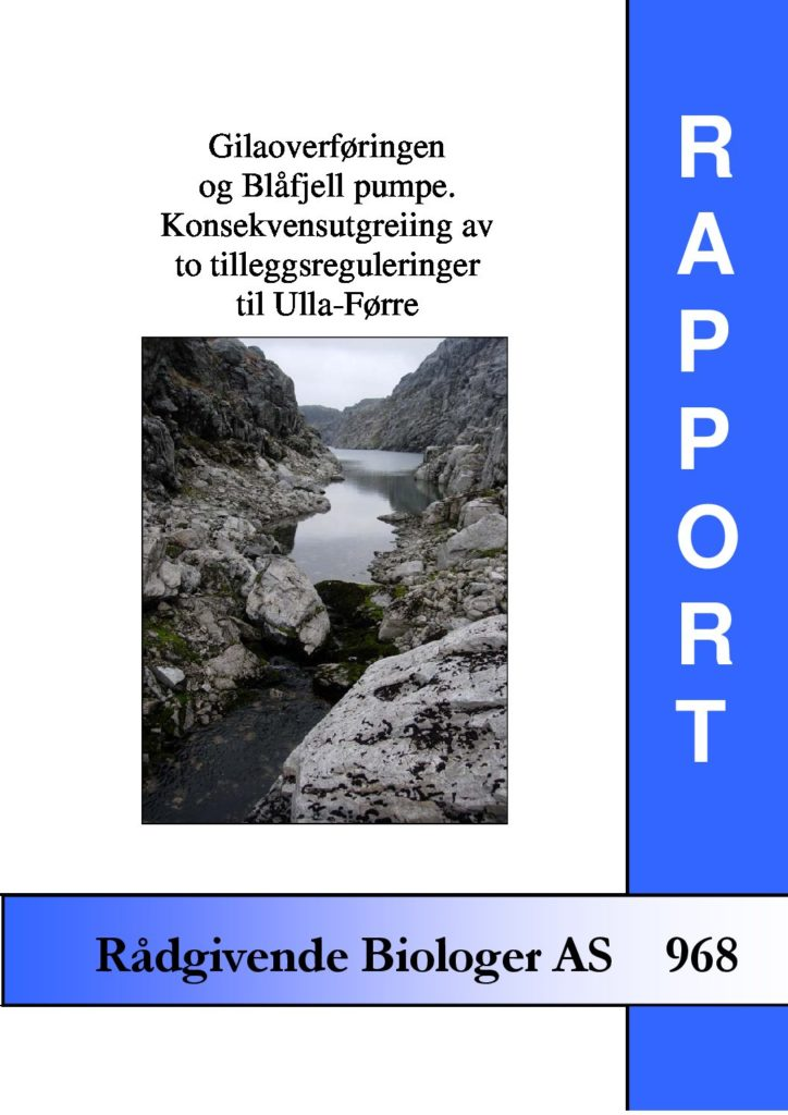 Rapport cover - rapport 968