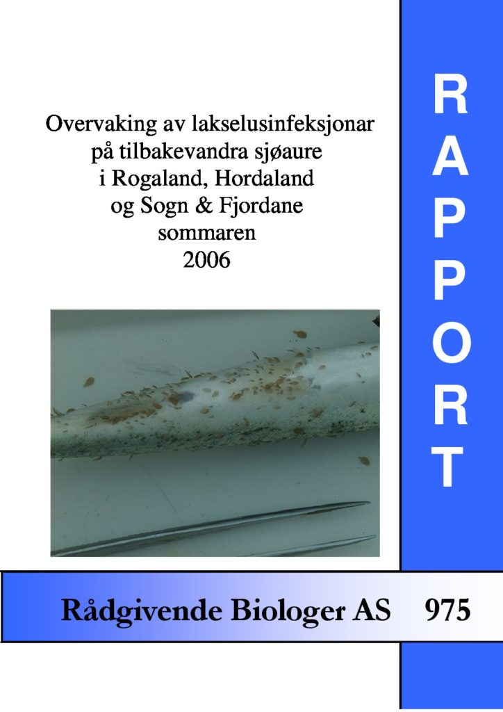 Rapport cover - rapport 975