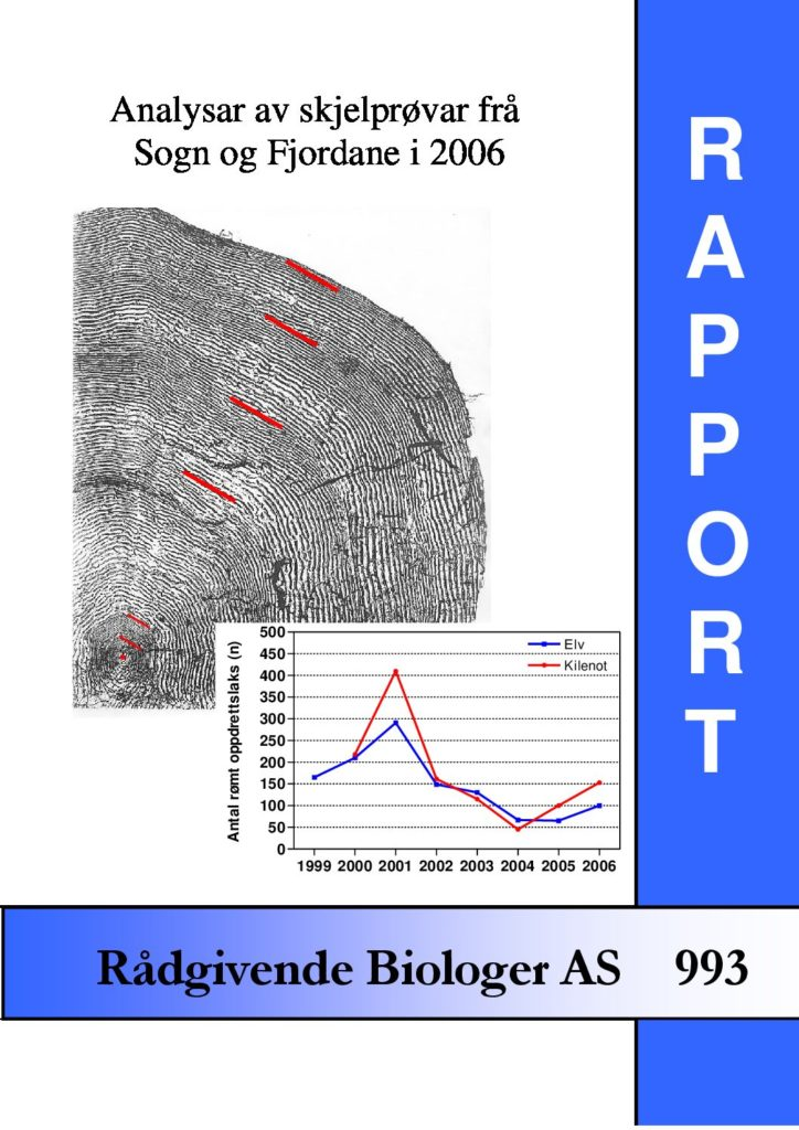 Rapport cover - rapport 993