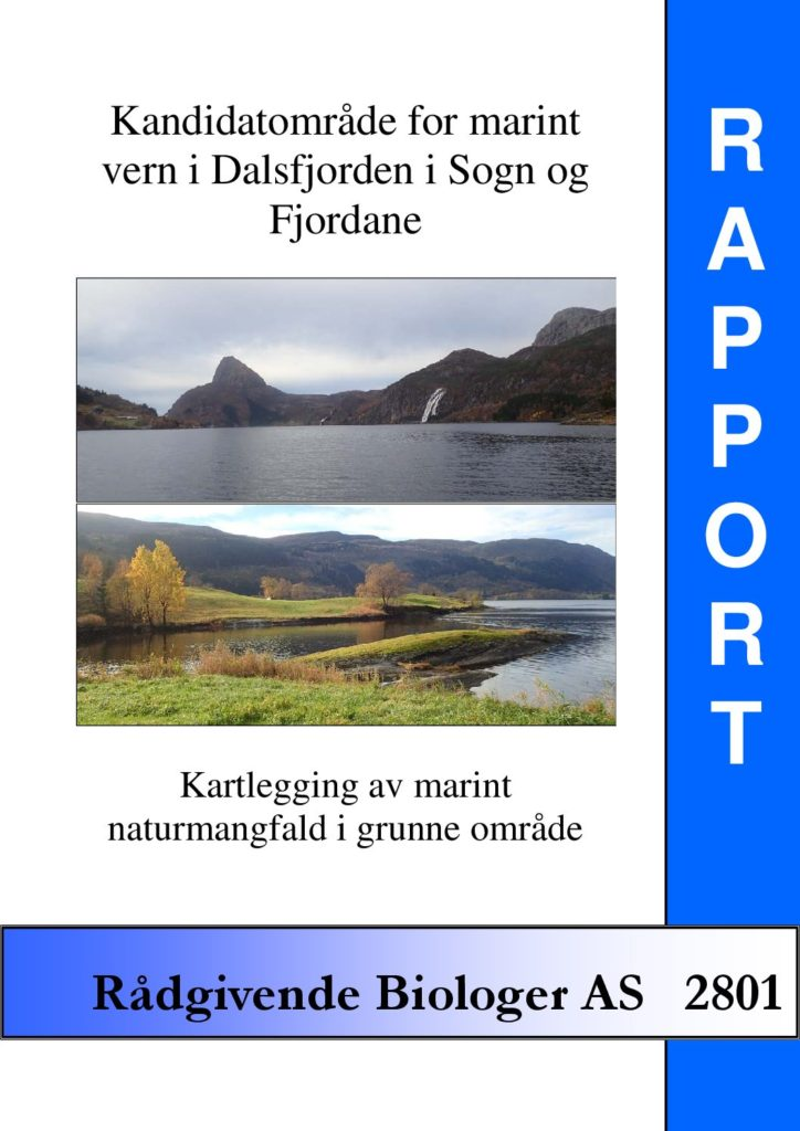 Rapport cover - rapport 2801