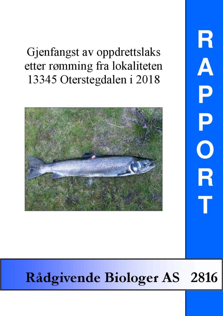 Rapport cover - rapport 2816