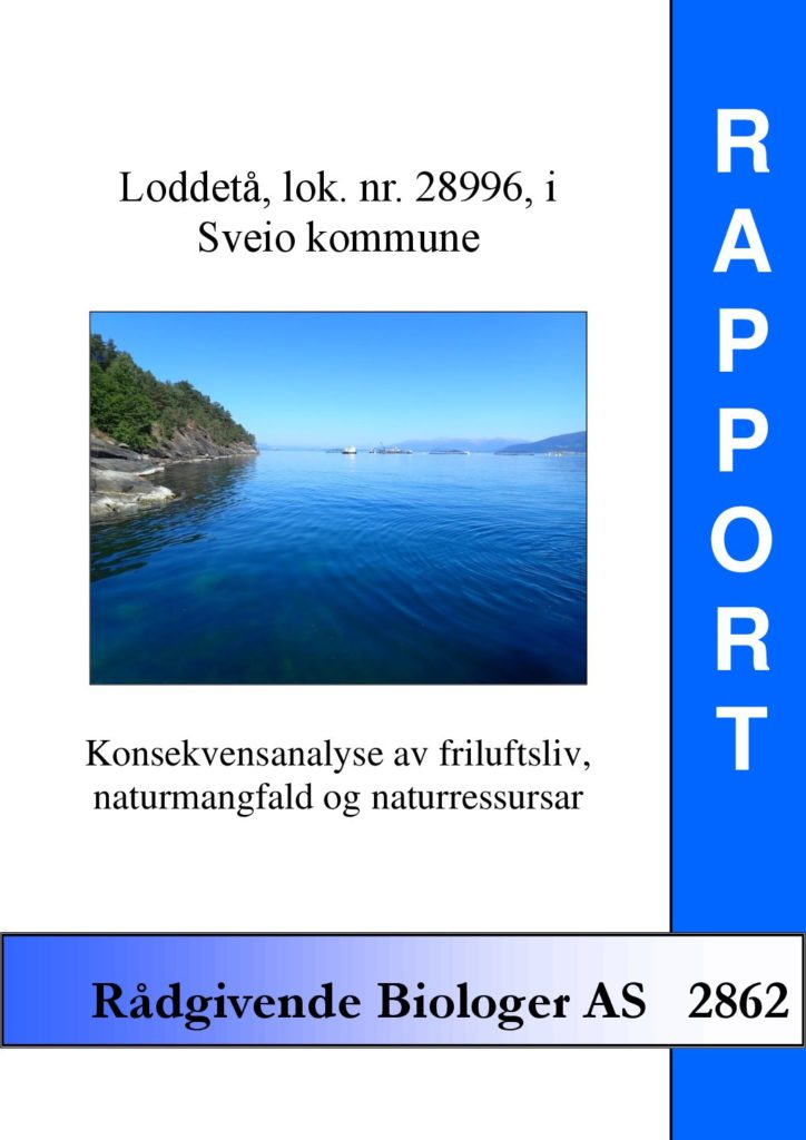 Rapport cover - rapport 2862