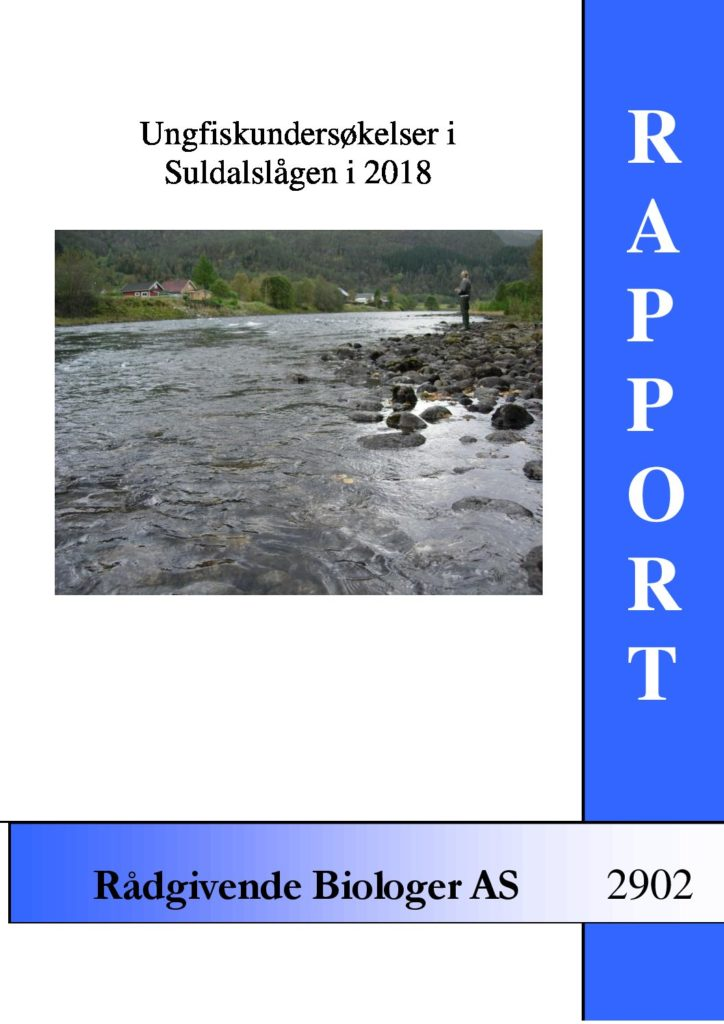Rapport cover - rapport 2902