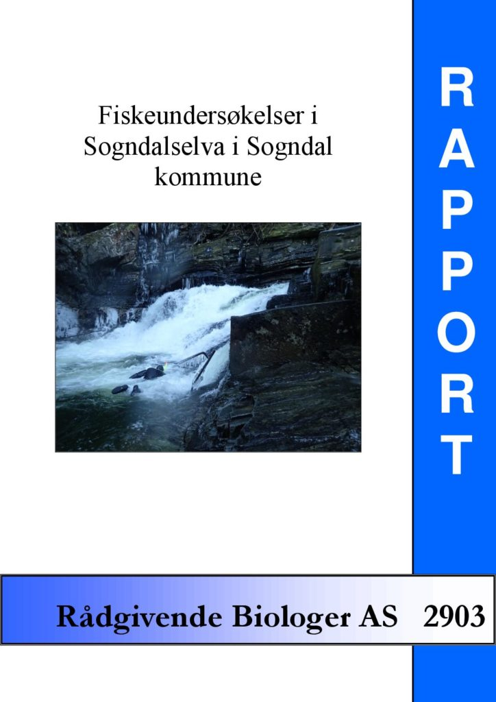 Rapport cover - rapport 2903
