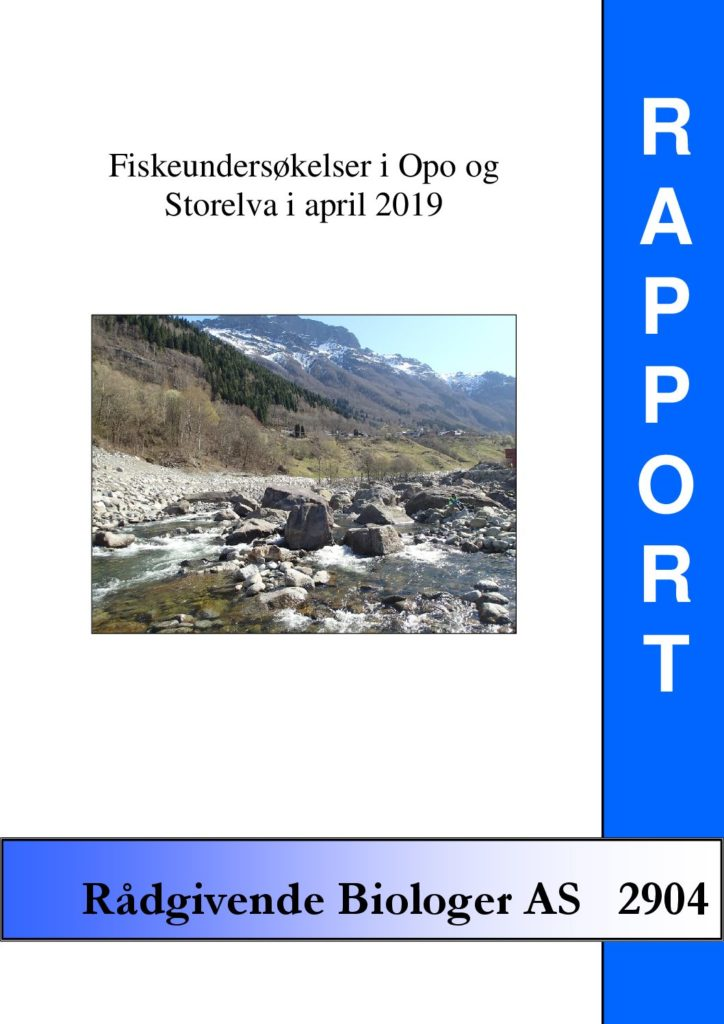 Rapport cover - rapport 2904
