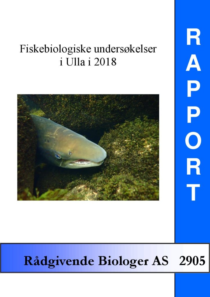 Rapport cover - rapport 2905