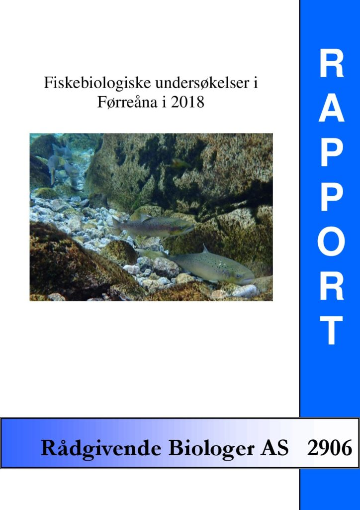 Rapport cover - rapport 2906