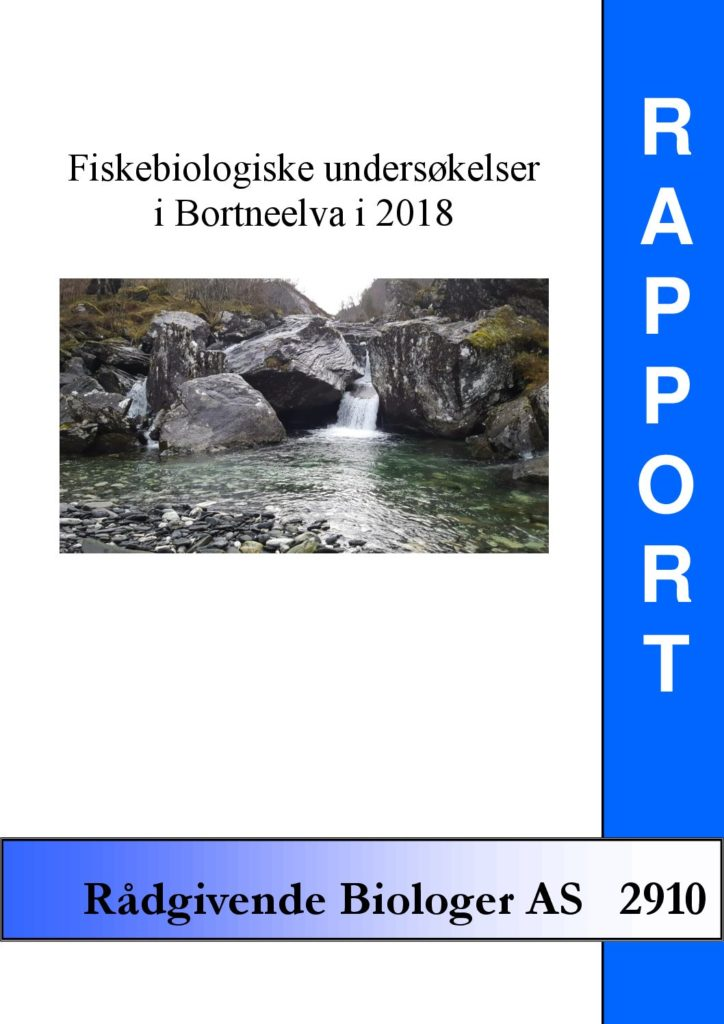 Rapport cover - rapport 2910