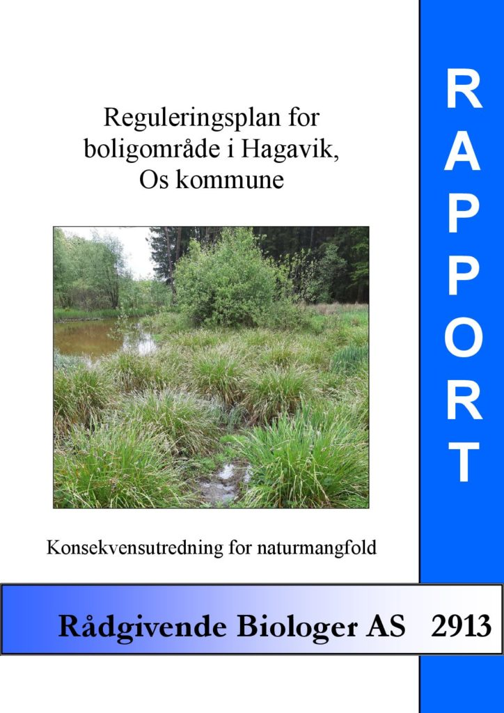 Rapport cover - rapport 2913