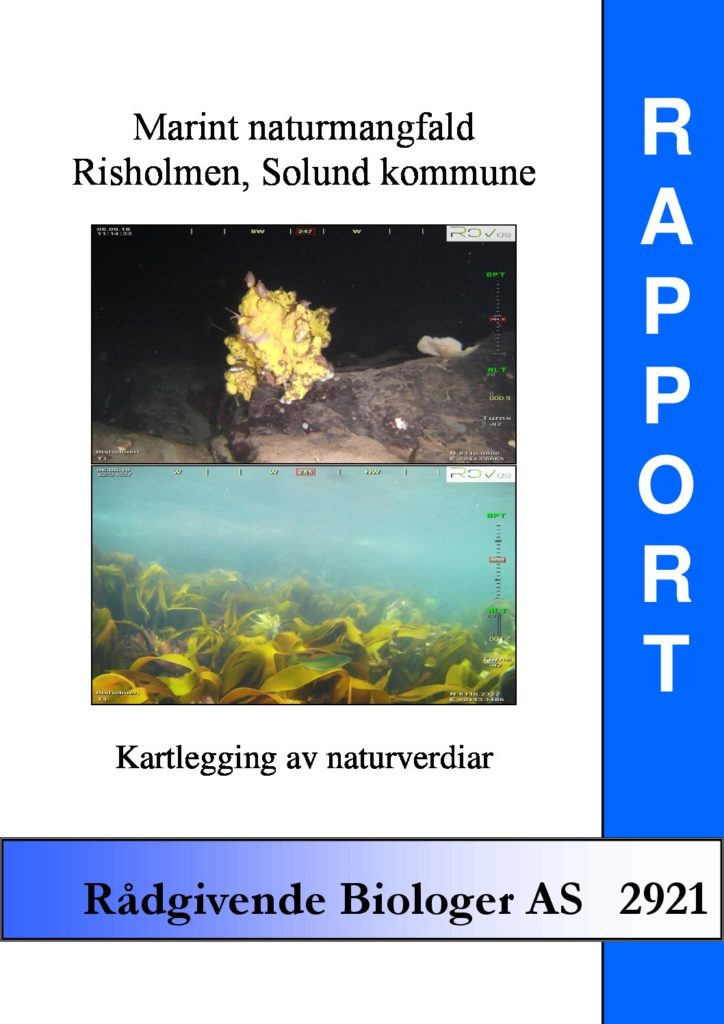 Rapport cover - rapport 2921