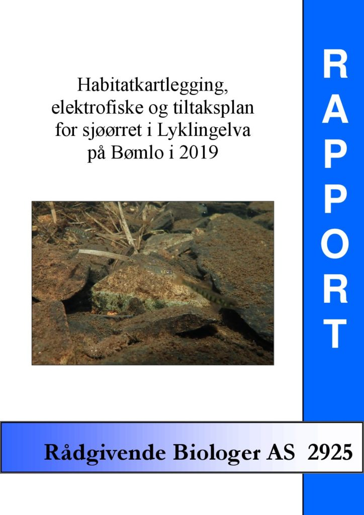 Rapport cover - rapport 2925