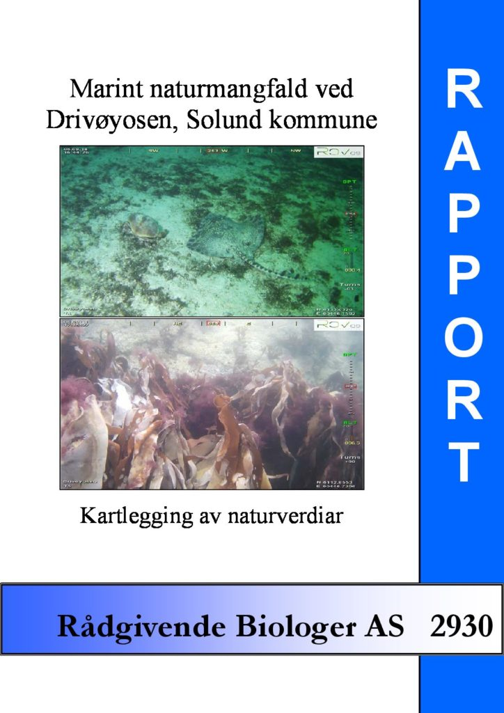 Rapport cover - rapport 2930