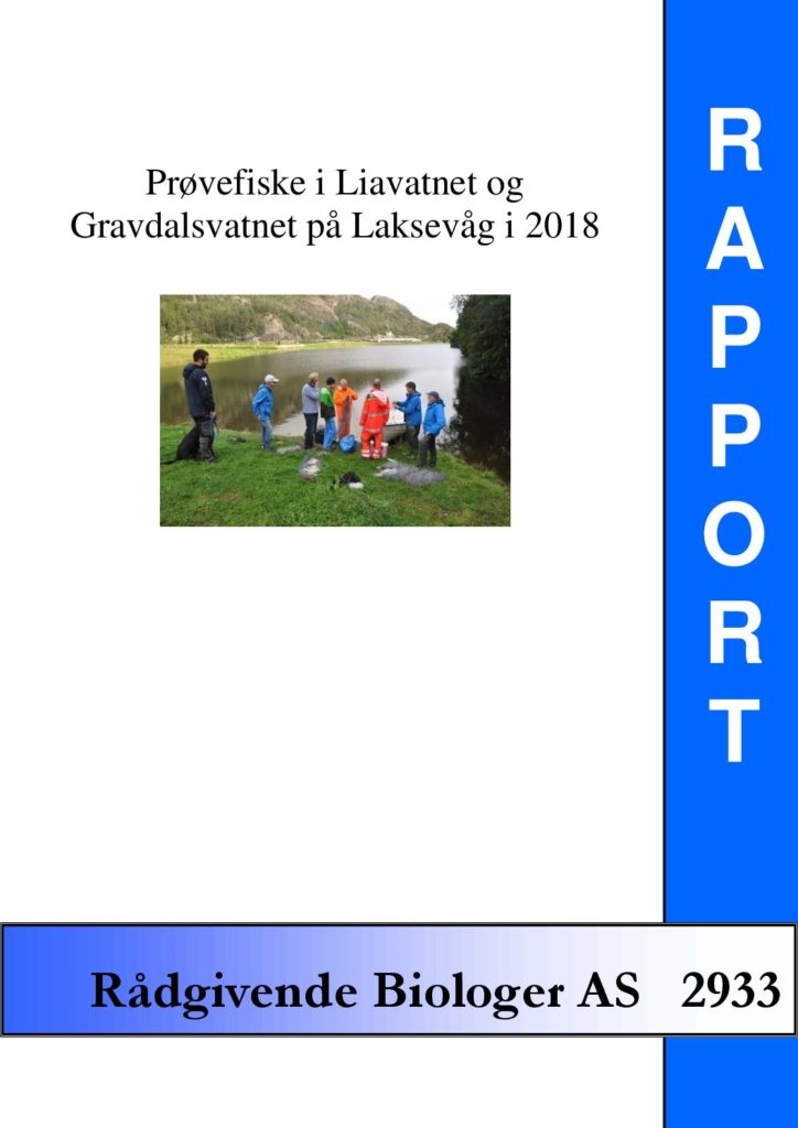 Rapport cover - rapport 2933