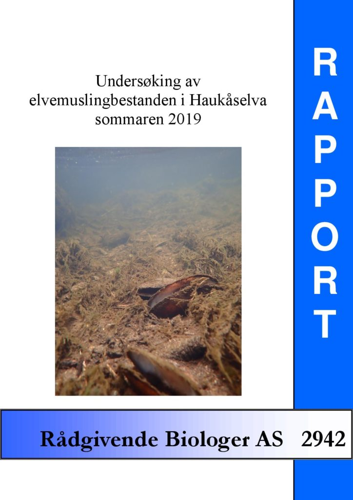 Rapport cover - rapport 2942