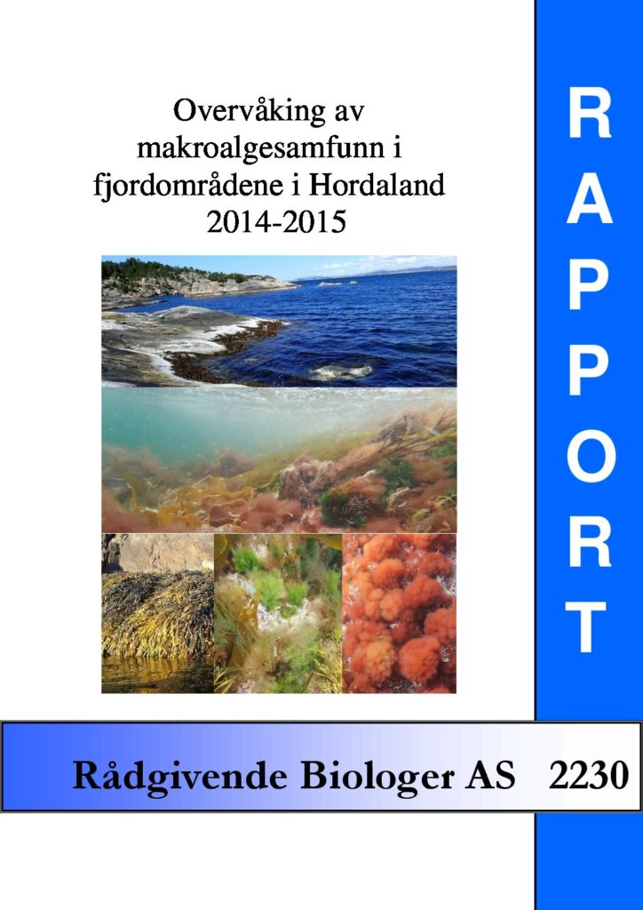Rapport cover - rapport 2230