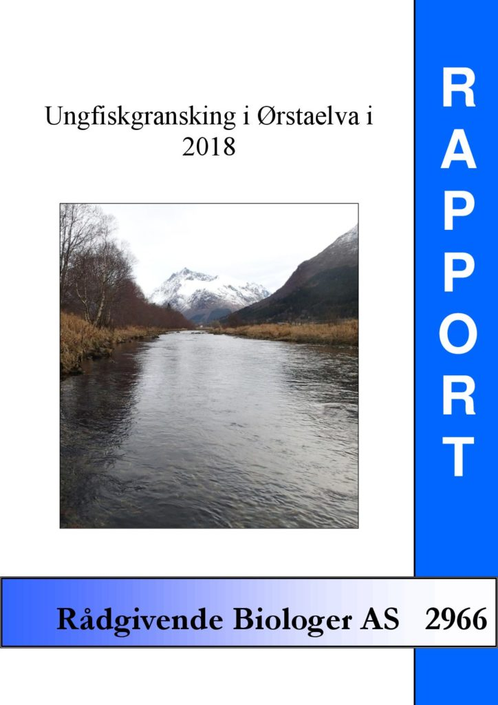 Rapport cover - rapport 2966
