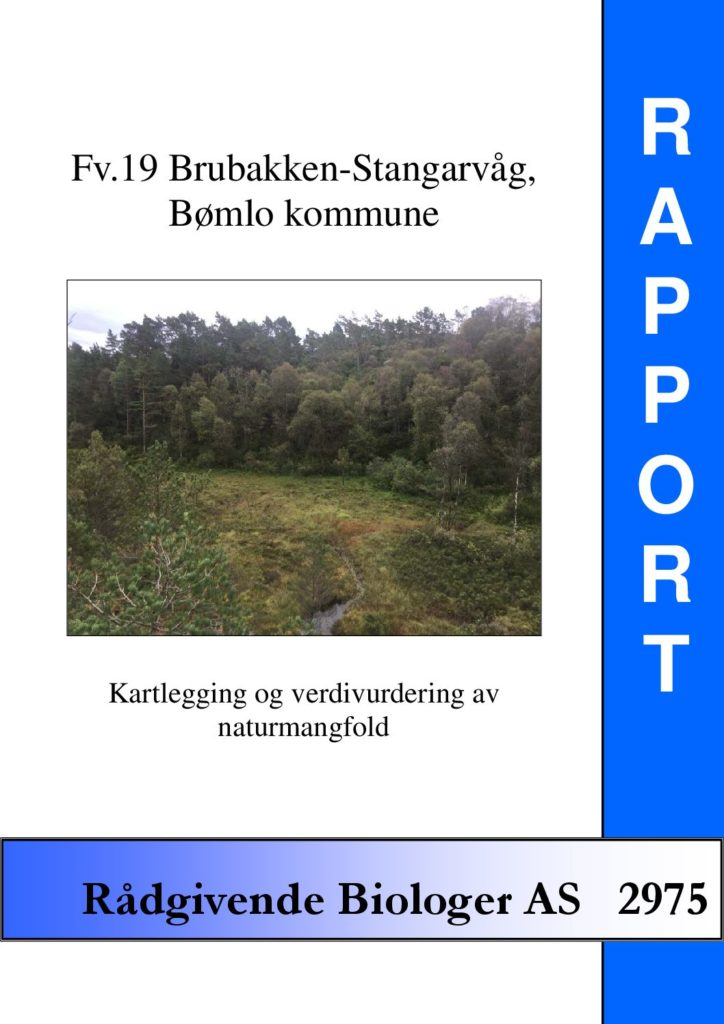 Rapport cover - rapport 2975