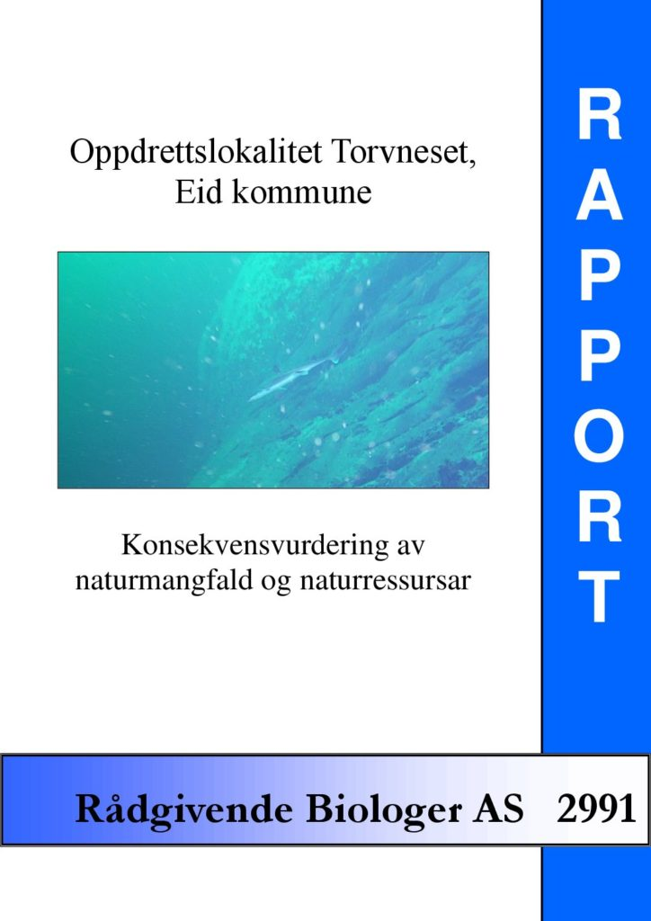 Rapport cover - rapport 2991