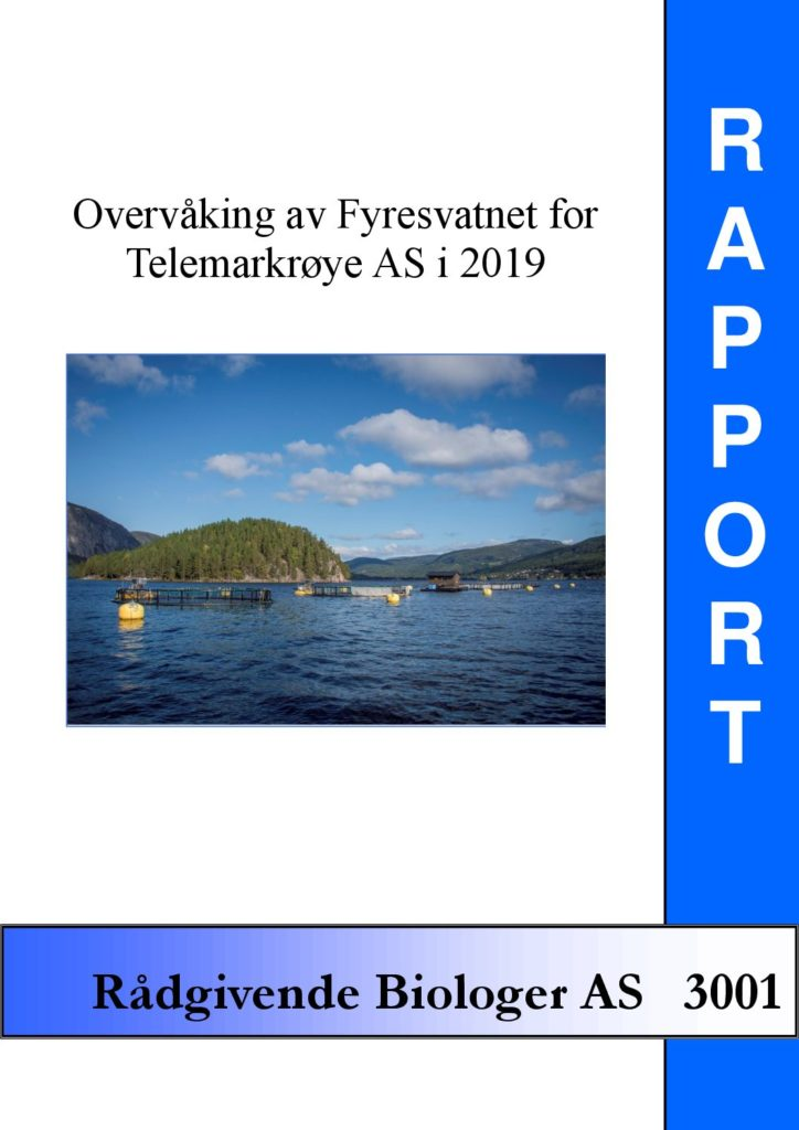 Rapport cover - rapport 3001
