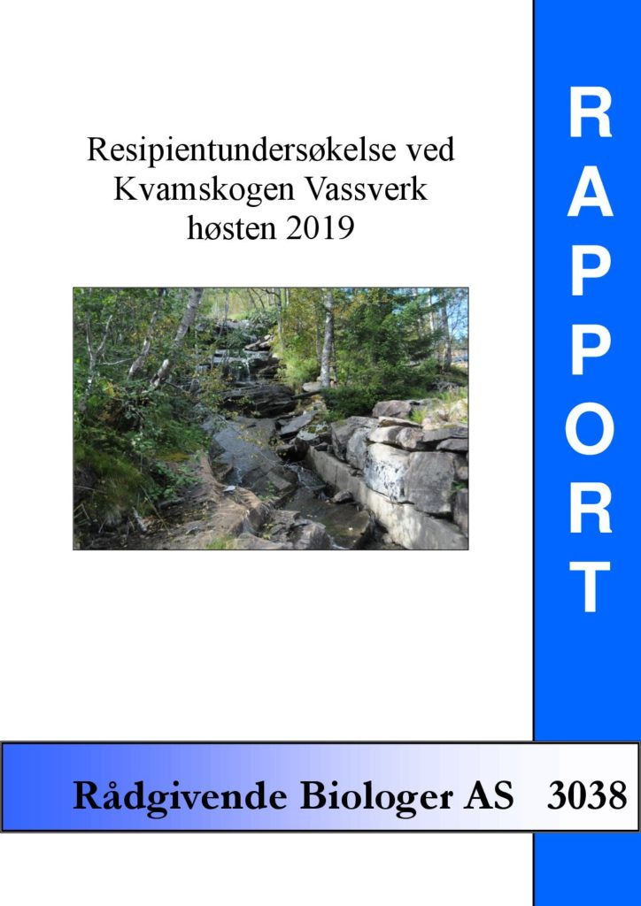 Rapport cover - rapport 3038