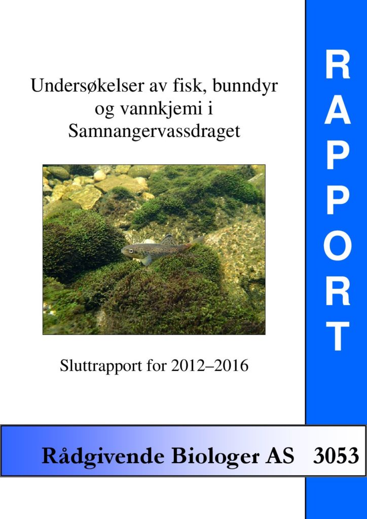 Rapport cover - rapport 3053
