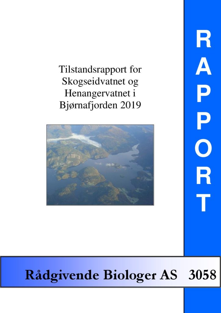 Rapport cover - rapport 3058