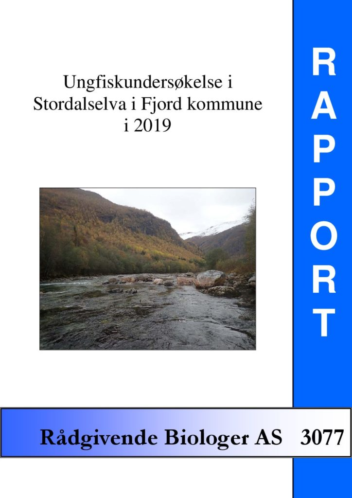 Rapport cover - rapport 3077