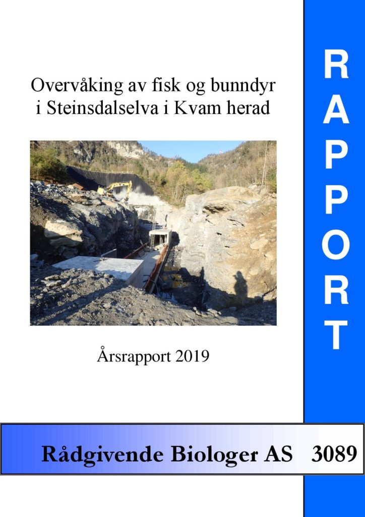 Rapport cover - rapport 3089