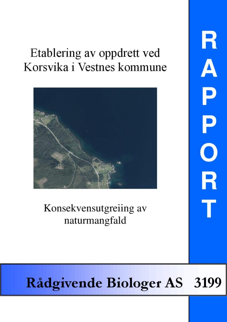 Rapport cover - rapport 3199