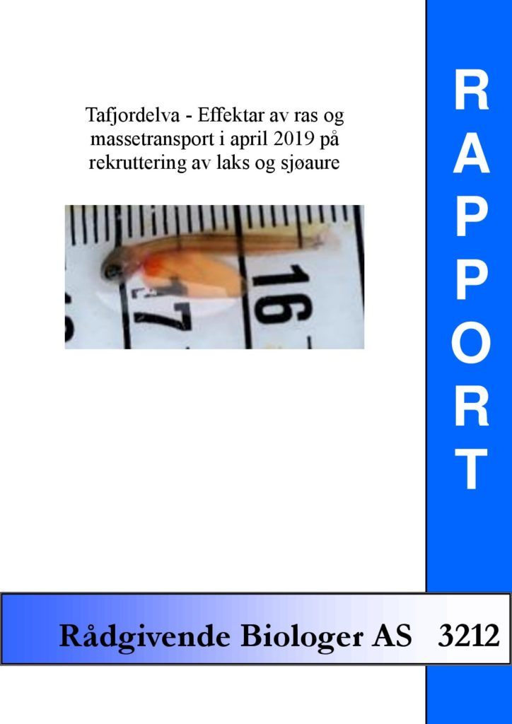 Rapport cover - rapport 3212